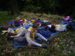IMAG0069-300x225 Slib na Rysím potoce v Údolí potoků 21. 6. 2014