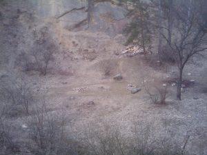IMAG0053-300x225 Výprava do Prokopského údolí 30. 3. 2013